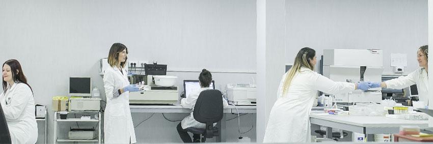 provetlab-laboratio-di-analisi-nuova